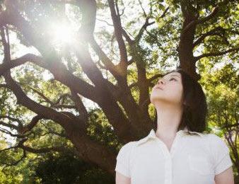 pim-van-lommel-bijna-dood-ervaring-groene-bomen-met-persoon-kijkend-omhoog