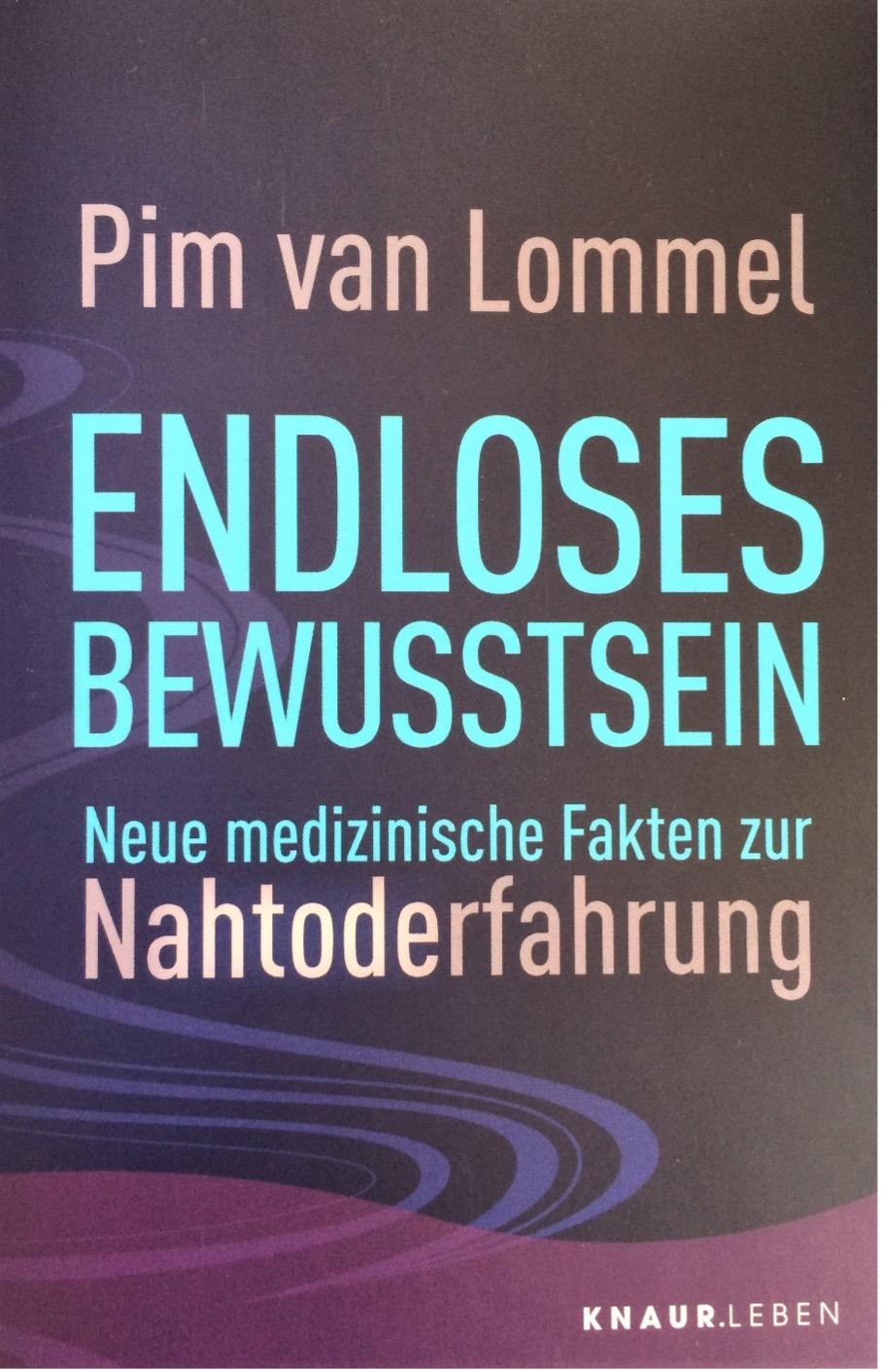 pim-van-lommel-endloses-bewusstein-neue-medizinische-fakten-zur-nahtoderfahrung-taschenbuchausgabe